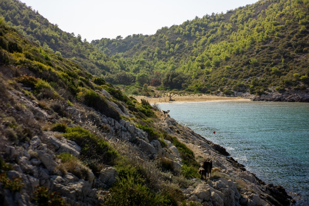 Photograph of a bay at Vis