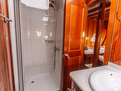 En suite wooden bathroom with a shower